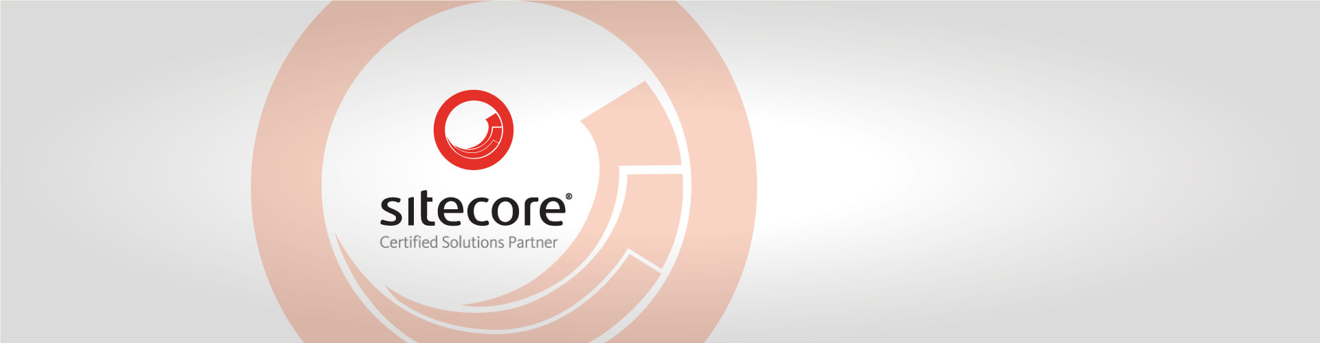 Sitecore Enterprise Solutions